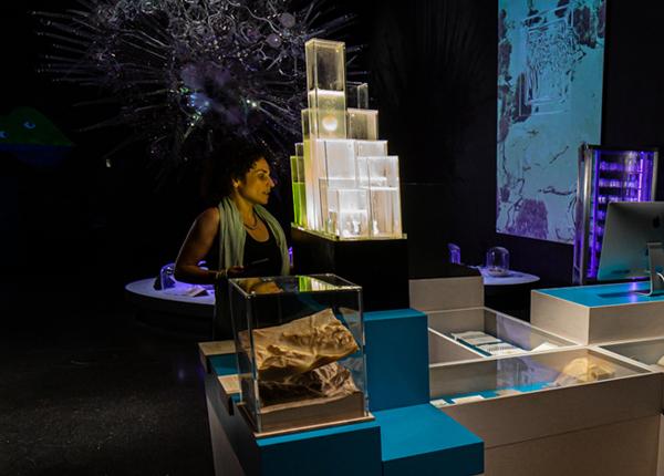 Art Labatory Berlin, Mind the Funghi, Futurium.